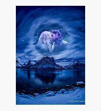 Moonlight Kiss Photographic Print