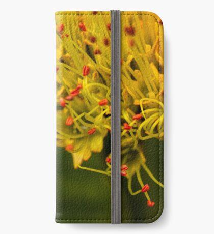 Anhängen iPhone Flip-Case