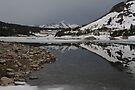 Freezing Reflection by photosbyflood