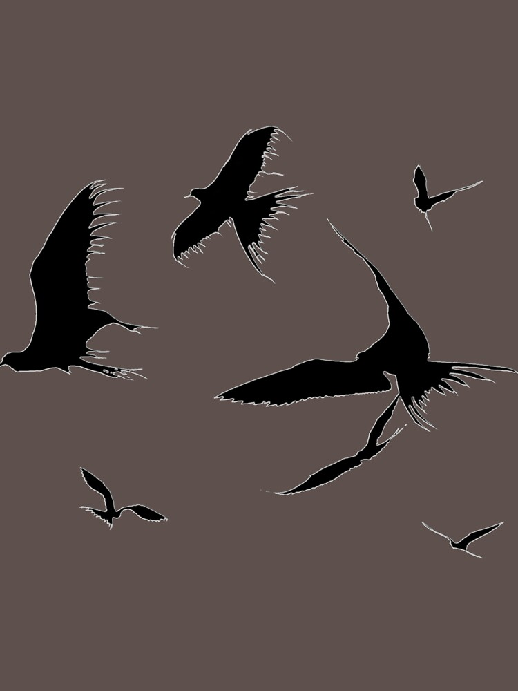 Frigate Birds - Ascending by Etakeh