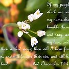 2nd Chronicles 7:14 by R&PChristianDesign &Photography