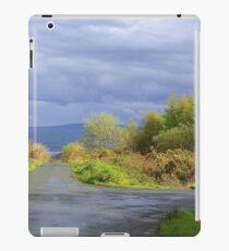 Rain Clouds And Gorse.................................Ireland iPad Case/Skin