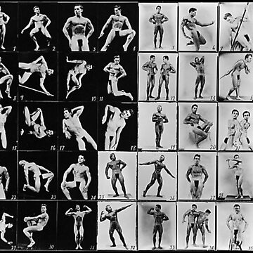 The Posedown by Hoopday