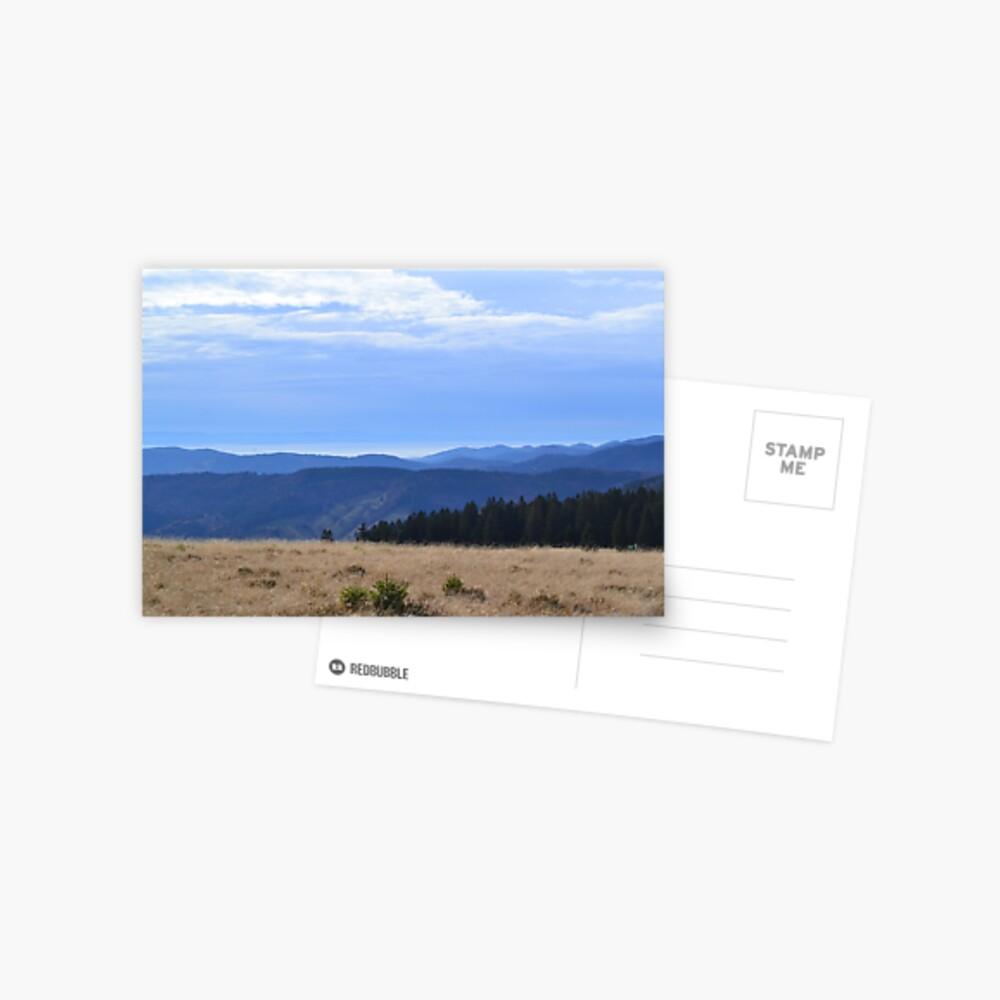 Schwarzer Wald Postkarte