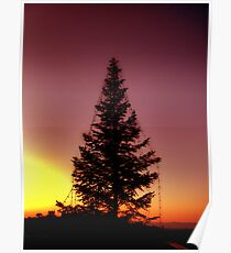 Merry Sunset Poster