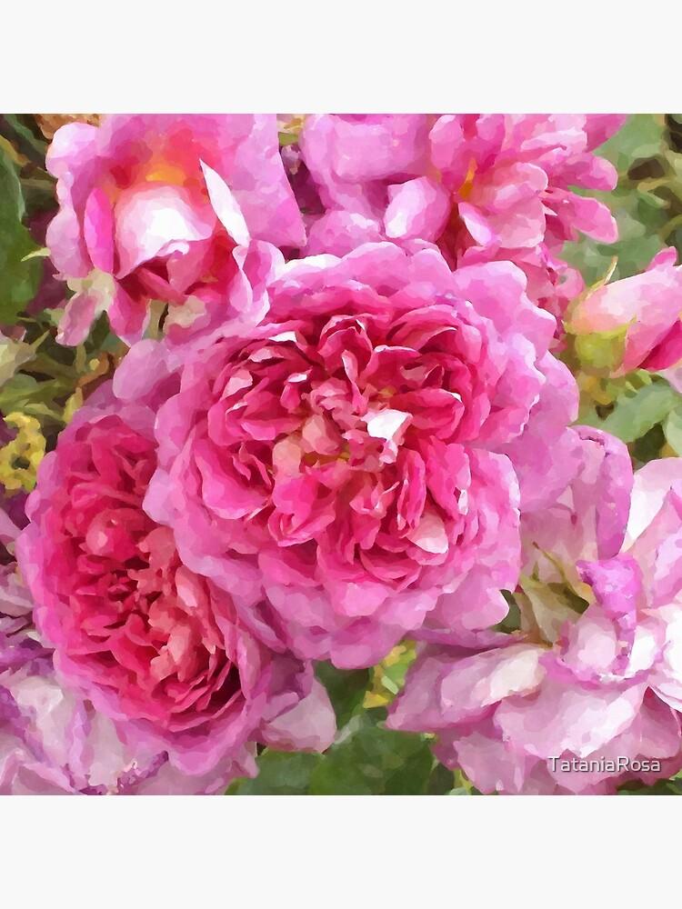 The Rose Garden by TataniaRosa