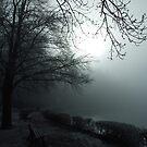 Winter Fog on a Lake by Daidalos