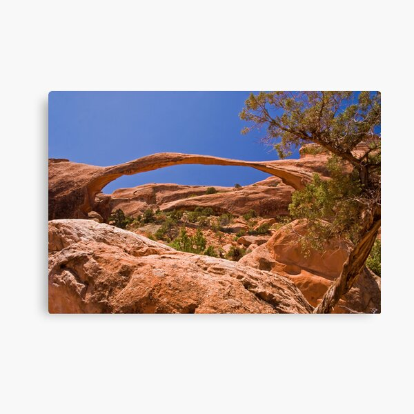 Landscape Arch at high noon Canvas Print