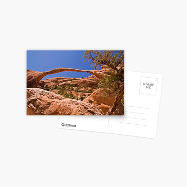 Landscape Arch at high noon Postcard