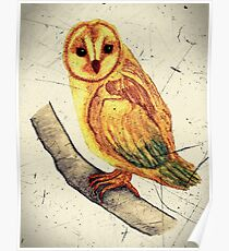 Owl Watercolor with Scratch Digital Overlay Poster