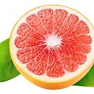 Grapefruit with leaves by 6hands