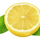 Lemon with leaves by 6hands