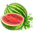 Watermelons by 6hands