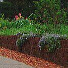 Visual Texture Garden by Linda Miller Gesualdo
