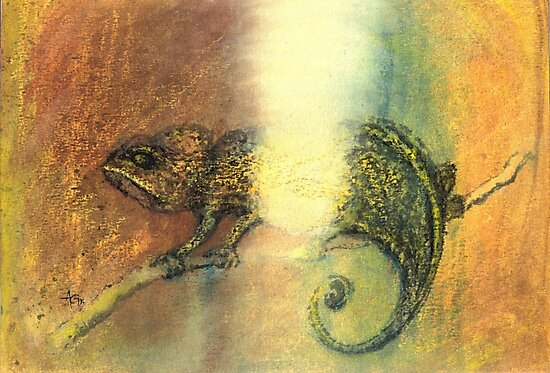 Chameleon and Light by Antea