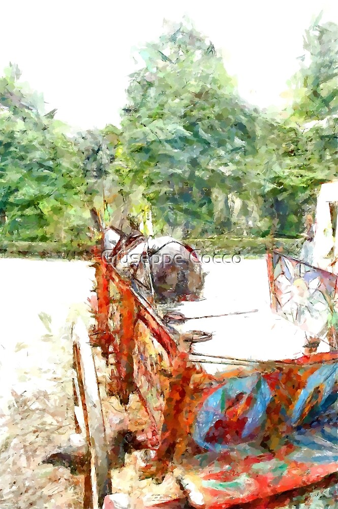 Donkey with sicilian cart by Giuseppe Cocco
