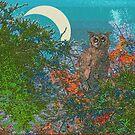 Owl In the Moonlight by Deborah Dillehay