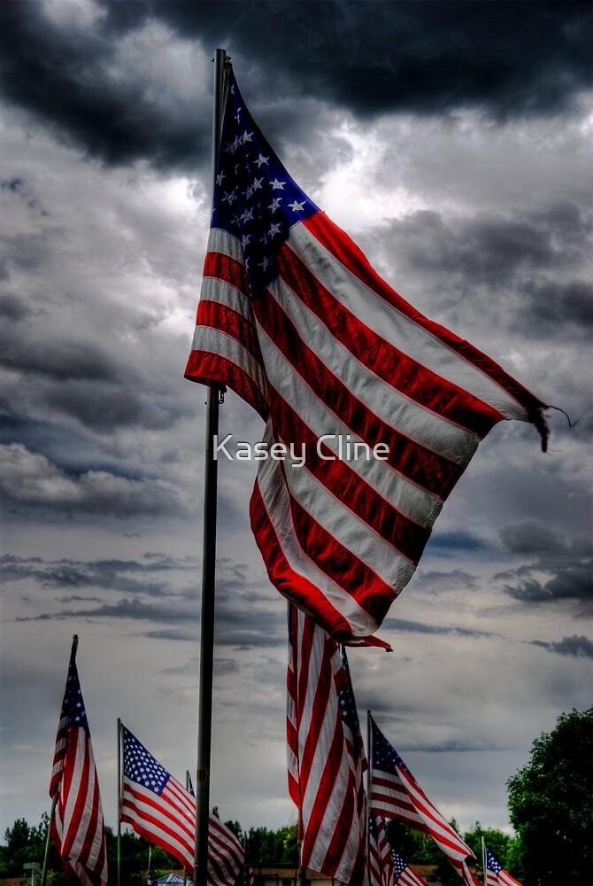 Patriotic by Kasey Cline