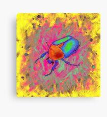 Protaetia cuprea ignicollis - Flower Beetle Canvas Print