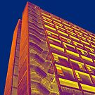 Park Hill Popart Part 3 of 6 by sidfletcher