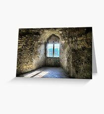 Window at Lewes Castle ( 9 ) Greeting Card