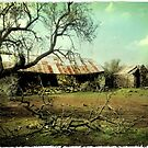 Forgotten Farmhouse by Heather Prince