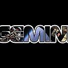 Gemini Spacewalk by Adrianna Allen