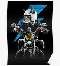Biker Cat Poster