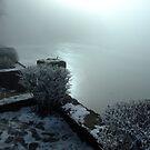 Winter Fog on a Lake II by Daidalos