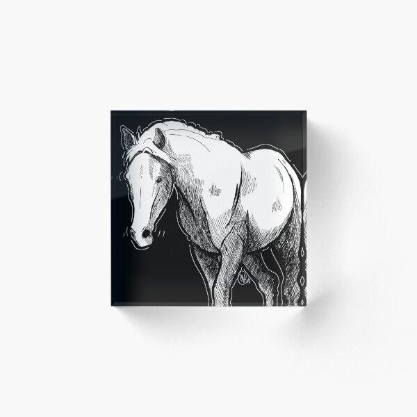Equine Crosshatch Acrylic Block