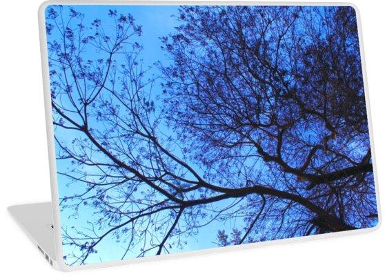 Blue Night  by mustafaidris