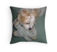 Now if I can just get its nose!  Skye with teddy Throw Pillow