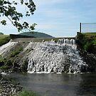 SILVER LAKE MILL   ( DAYTON vA) NUMBER 2 by Debra Willis