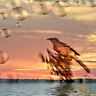 Mockingbird at Sunset by Pat Moore