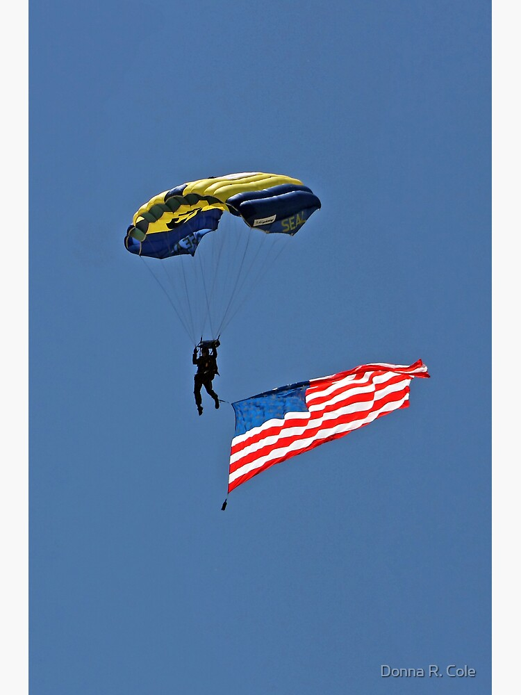 Parachuting with the Flag by alwaysdrc