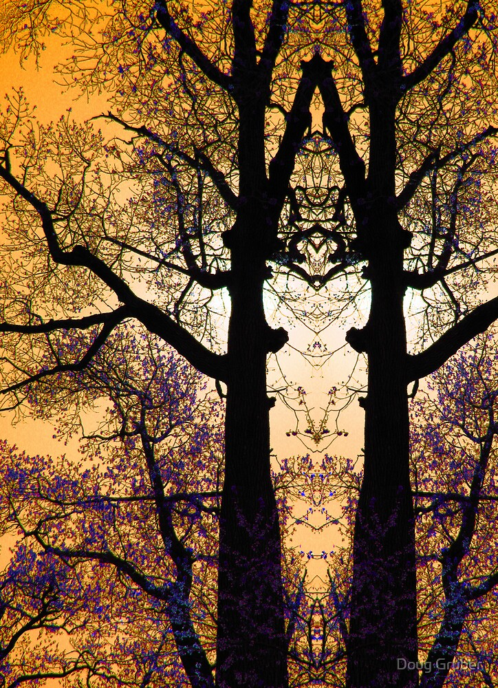 Tree Tracery by Doug Gruber