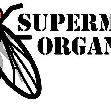 Drosophila Fruit Fly Supermodel Model Organism by MoPaws
