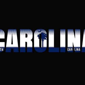 South Carolina License Plate by VsTheInternet