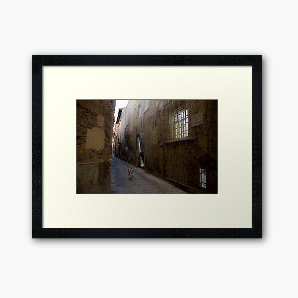 Dog Street Framed Art Print