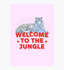 Retro Tiger - welcome to the jungle Photographic Print