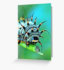Close Up - Cairns birdwing caterpillar Greeting Card