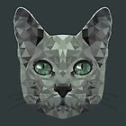 LOW POLY CAT by Jiaan