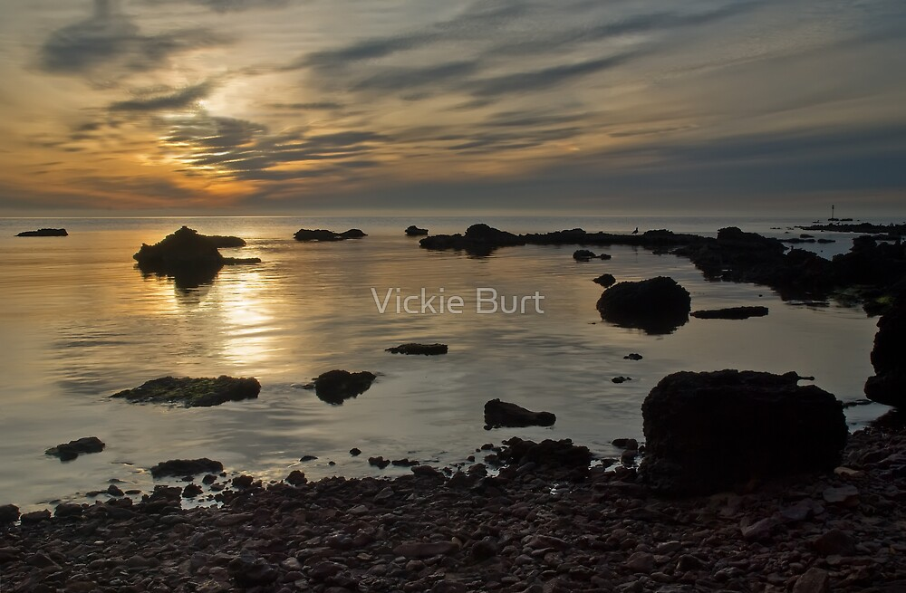 Another View of Davies Bay by Vickie Burt