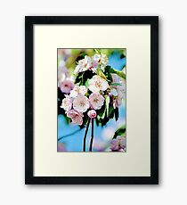 Spring into Bloom Matching Print Framed Print