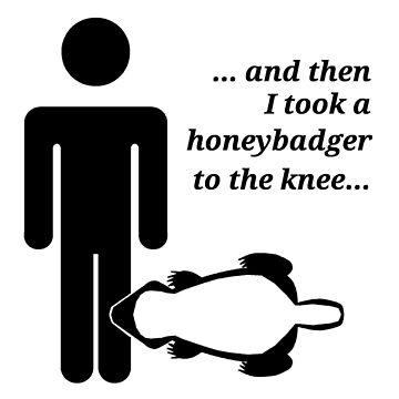 Honeybadger to the Knee by Butzengear