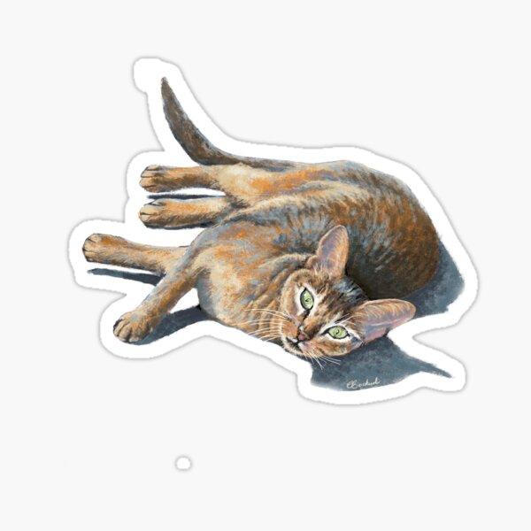Abyssinian cat lying Sticker