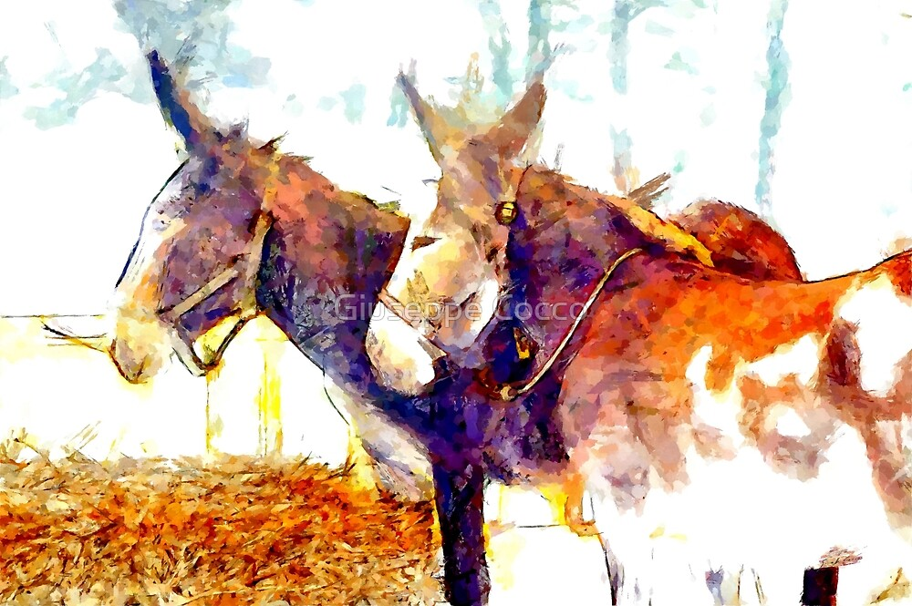 Two donkeys by Giuseppe Cocco