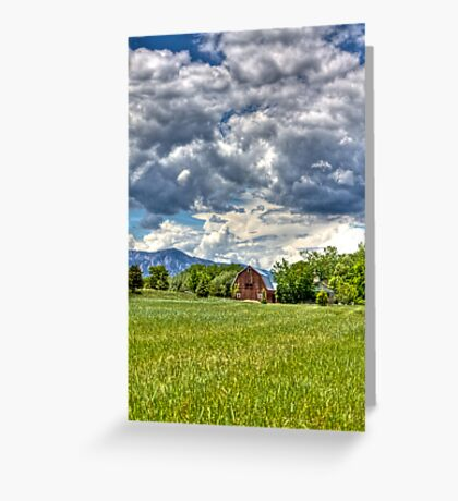 Green Green Grass Greeting Card