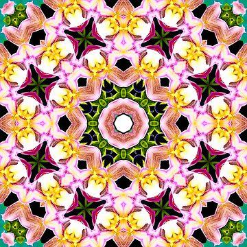 Bouquets of Light Mandala by wildmirror