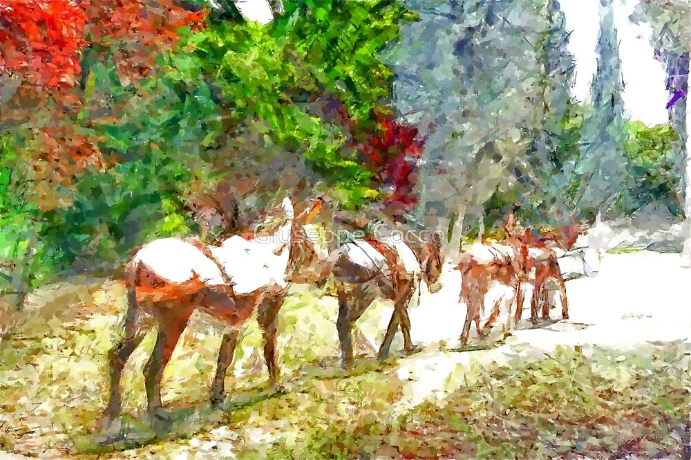 Donkeys in single file by Giuseppe Cocco